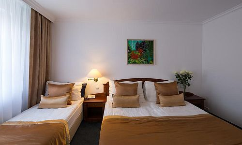 Accommodation in the center of Gyor at great price Hotel Fonte Gyor***